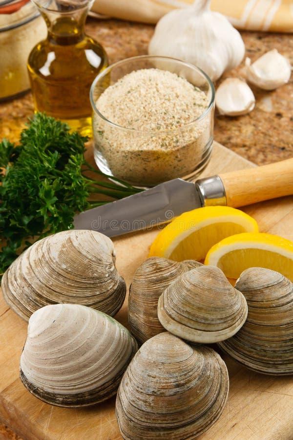 samlar musslor ny littleneck royaltyfria bilder