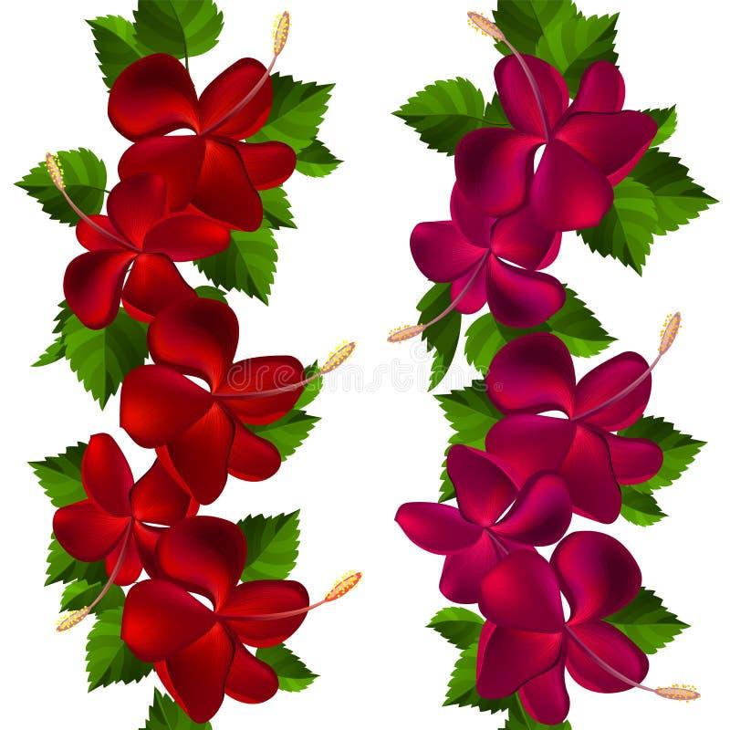 Samless Rand gebildet von den Hibiscusblumen lizenzfreie abbildung