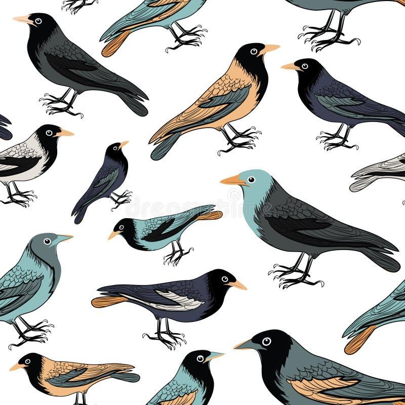 Samling av den sömlösa modellen för olika fåglar white för vektor för bakgrundsillustrationhaj vektor illustrationer