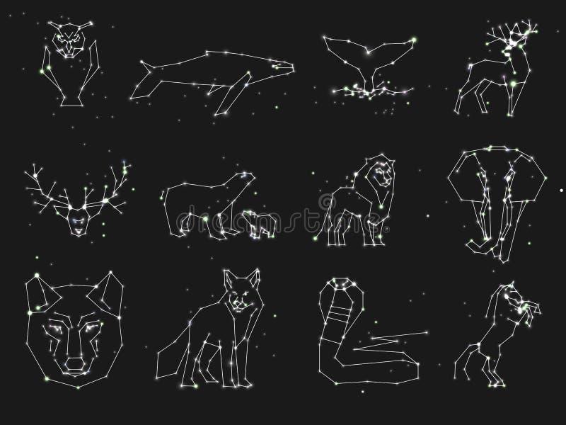 Samling av djurkonstellation på mörk himmel Vilda djur med linjen och stjärnor, horoskopstil konstellation royaltyfri illustrationer