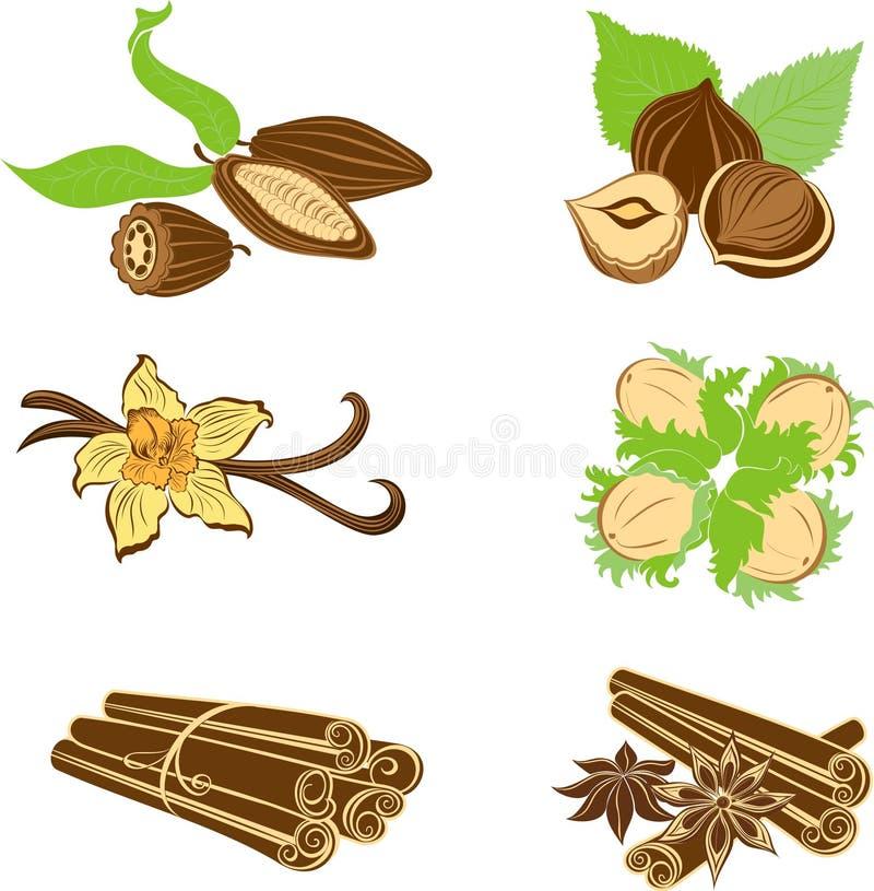 Samling av efterrättingredienser. Hasselnötter kakaobönor, Vanil stock illustrationer