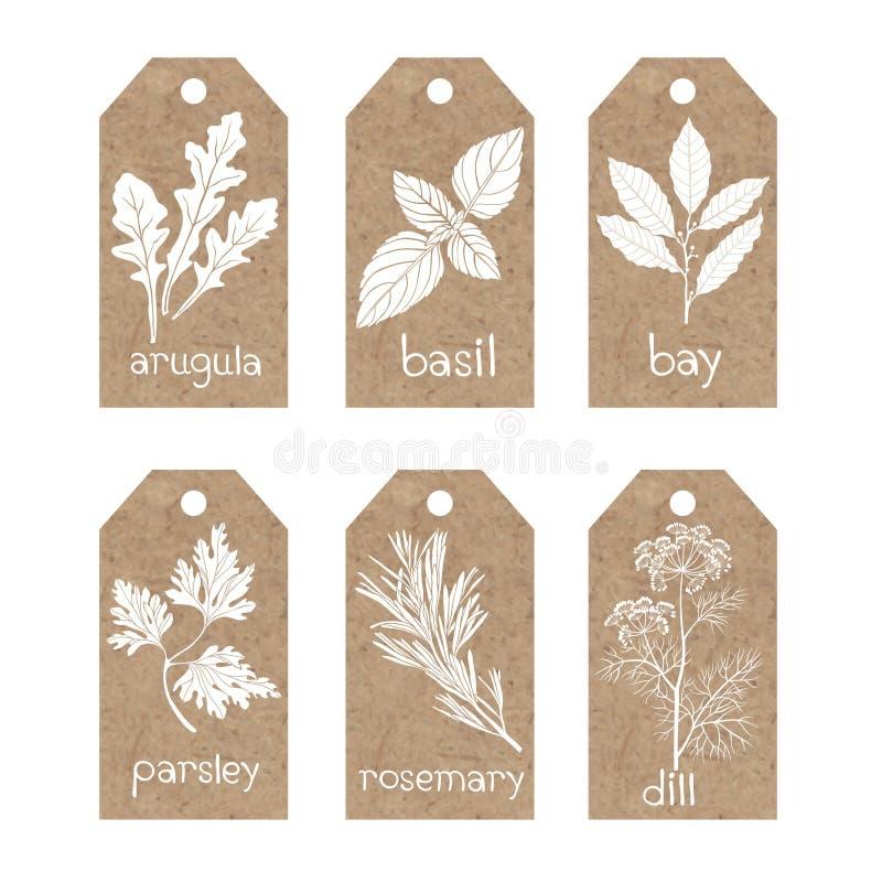 Samling av etiketter för kraft papper med kulinariska örter och kryddor royaltyfri illustrationer