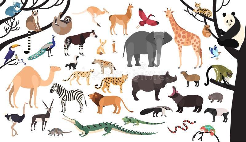 Samling av exotiska djur och fåglar som bor i savannah och tropisk skog vektor illustrationer