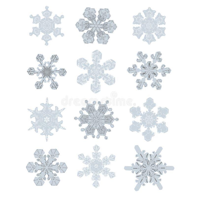 Samling av extremt detaljerade snöflingor Likadan design för natur stock illustrationer