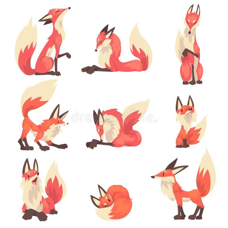 Samling av för teckentecknad film för röda rävar illustrationen för vektor vektor illustrationer