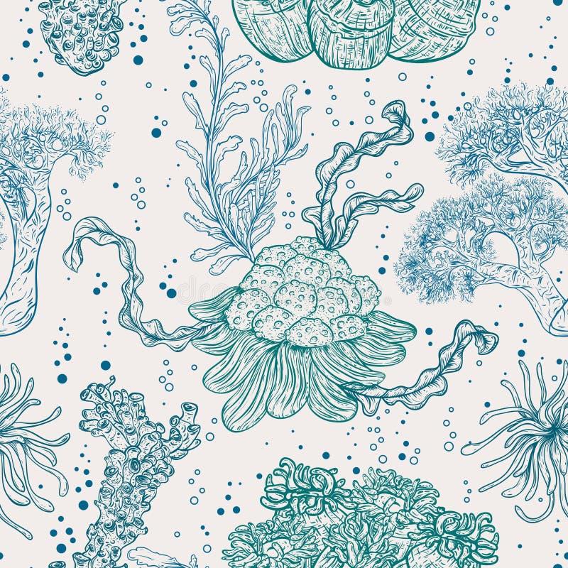 Samling av flottaväxter, sidor och havsväxt vektor illustrationer