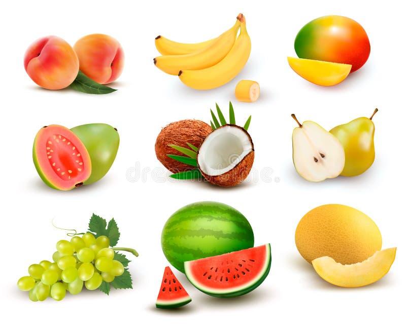 Samling av frukt och bär royaltyfri illustrationer