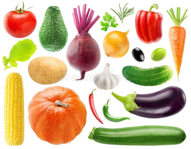 Samling av grönsaker arkivbild