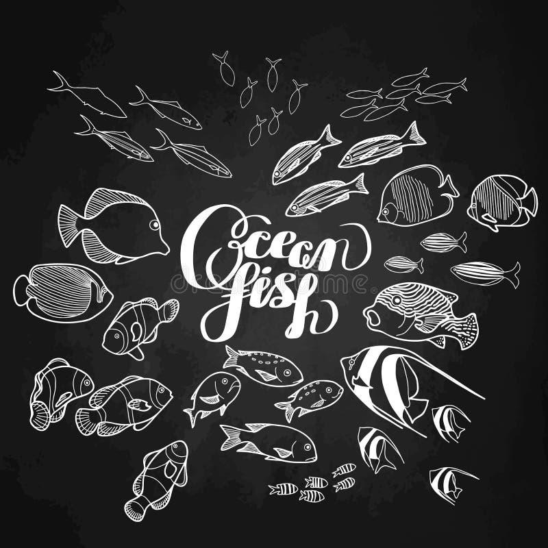 Samling av havfisken royaltyfri illustrationer
