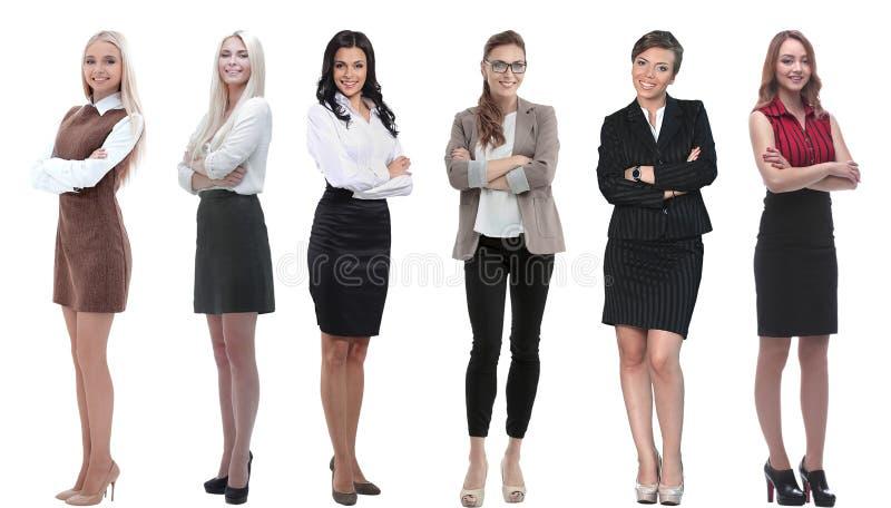 Samling av hellånga stående av unga affärskvinnor fotografering för bildbyråer
