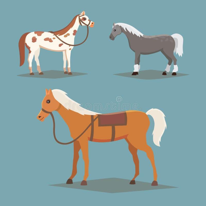 Samling av isolerade hästar Gulliga djur för tecknad filmhästlantgård Differend bröd stock illustrationer