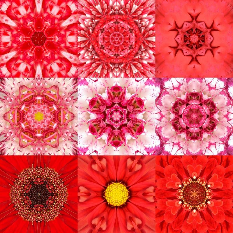 Samling av kalejdoskopet för nio den röda koncentriska blommaMandalas royaltyfri foto