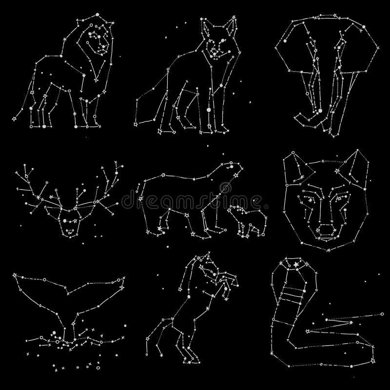 Samling av konstellation för handattraktiondjur på mörk himmel Skissad vilda djur med linjen och stjärnor, horoskopstil stock illustrationer