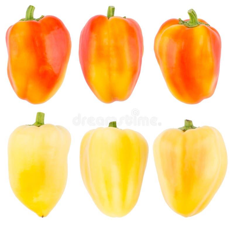 Samling av nya kulöra peppar som isoleras på vit bakgrund royaltyfri foto