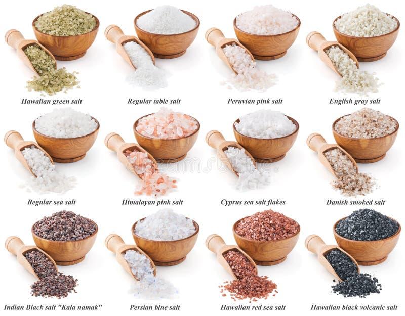 Samling av olika typer av salt som isoleras på arkivbilder