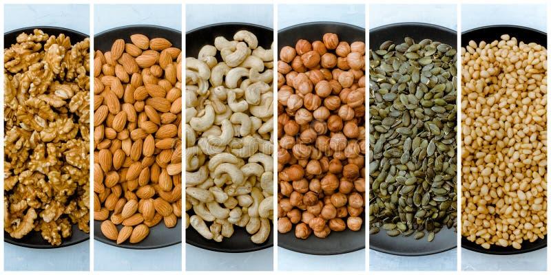 Samling av olika typer av nötter Cashew, hasselnöt, mandel, valnöt, ceder arkivfoto