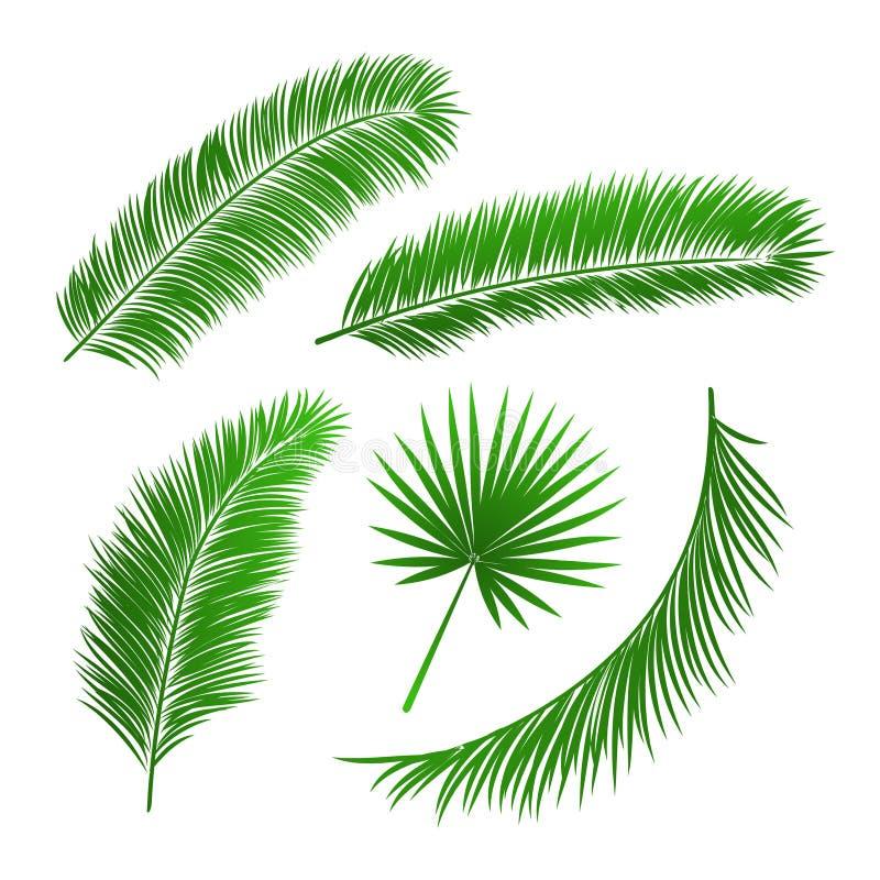 Samling av palmträdsidor stock illustrationer