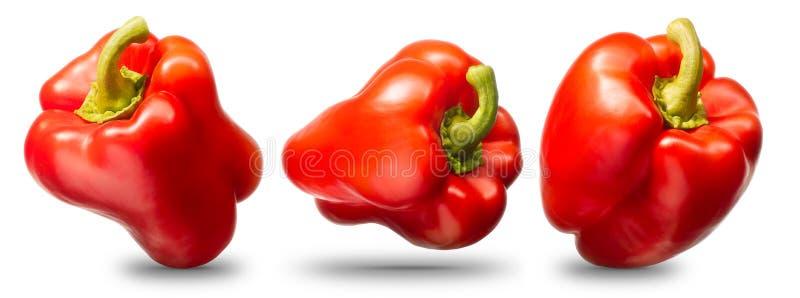 Samling av röd peppar som isoleras på vit royaltyfri fotografi