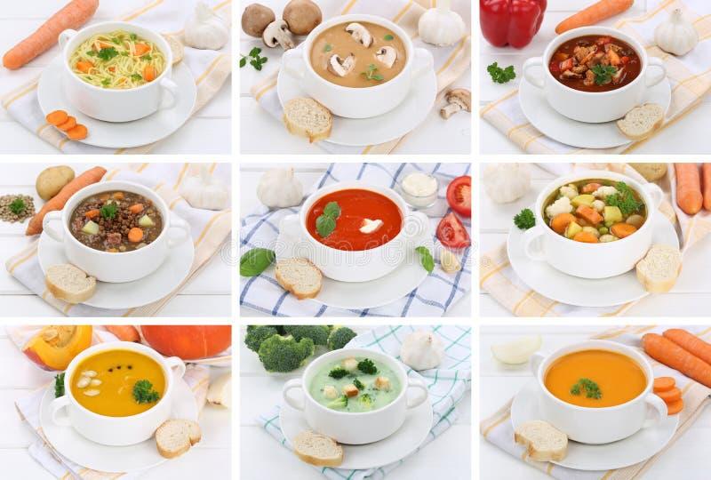 Samling av soppasoppa i nudel för bunketomatgrönsak med lodisar arkivfoto