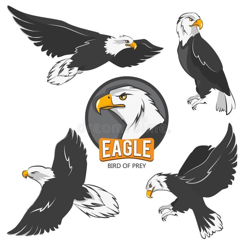 Samling av tecknad filmörnar Isolat för flygfåglar på vit stock illustrationer