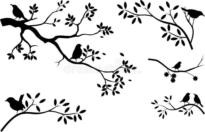 Samling av trädkonturn med fågeln royaltyfri illustrationer