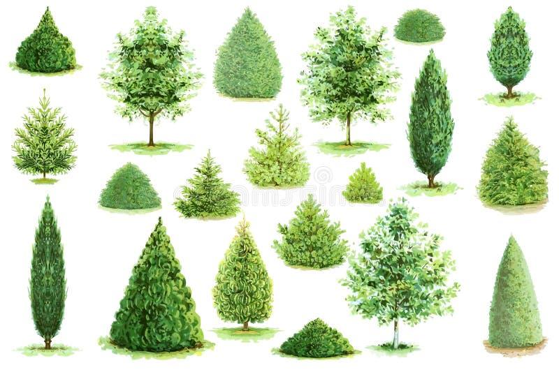Samling av trädvektorn vektor illustrationer