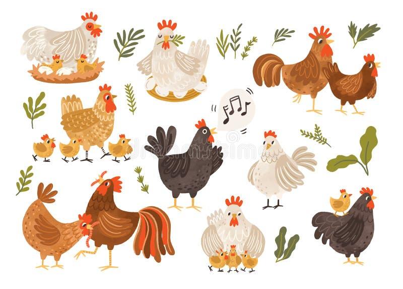Samling av tupp, höna och fågelungar som isoleras på vit bakgrund Packe av höna med barnaskaran Gullig älskvärd familj av vektor illustrationer