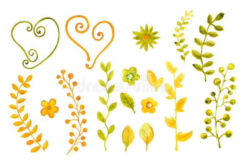 Samling av vattenfärger av blommor och sidor F?r r?kningsdesign och att f?rpacka, bakgrunder vektor illustrationer