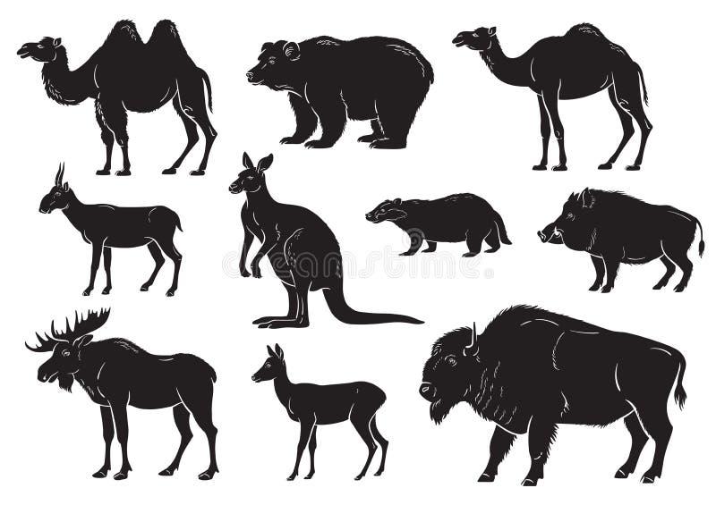 Samling av vilda djur på vit bakgrund stock illustrationer