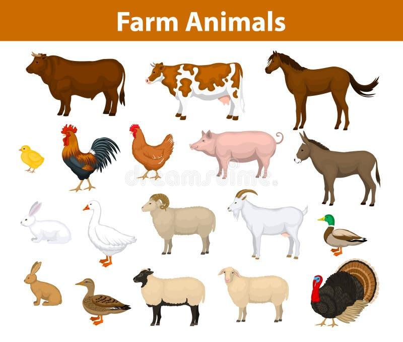 Samling för lantgårddjur vektor illustrationer
