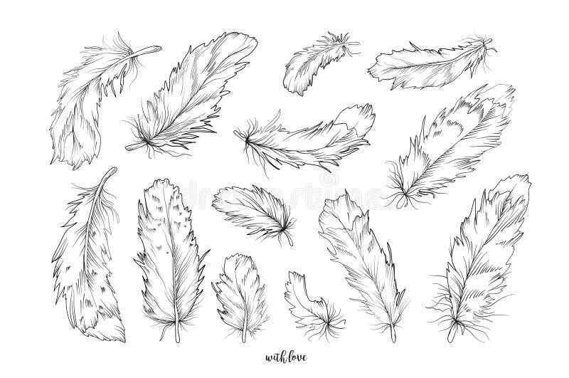 Samling för uppsättning för beståndsdelar för fjäderfågelvektor hand dragen märkes- royaltyfri illustrationer
