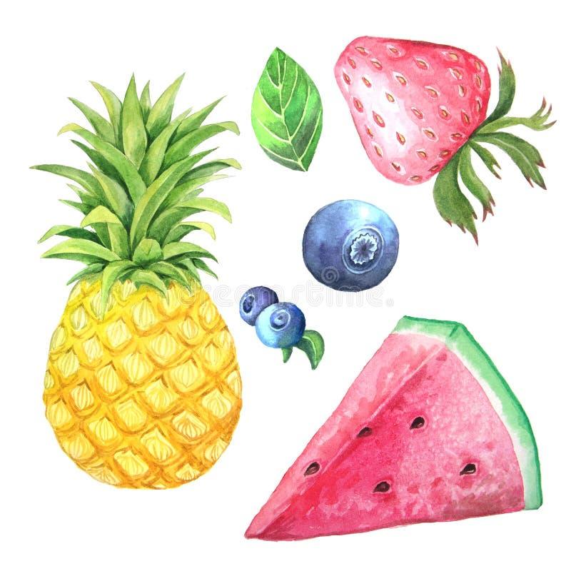 Samling för vattenfärgsommarfrukter royaltyfri illustrationer