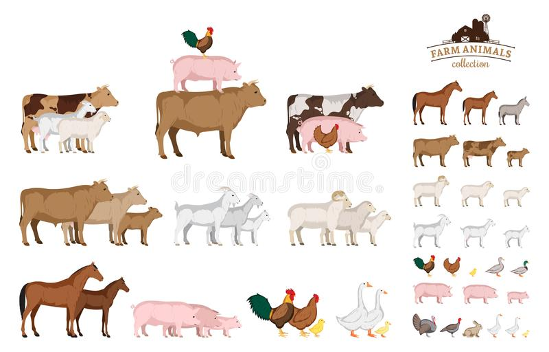 Samling för vektorlantgårddjur som isoleras på vit vektor illustrationer