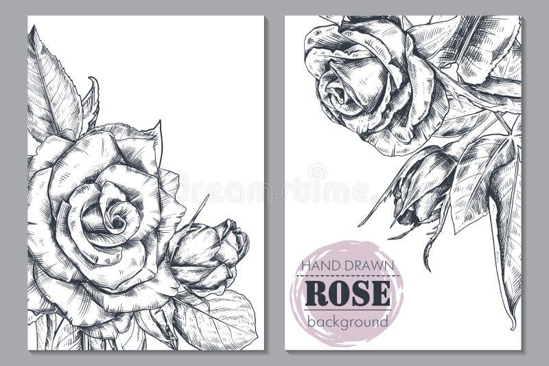 Samlingen av blom- bakgrunder för vektorn för kort eller inbjudan med den drog handen steg blommor royaltyfri illustrationer