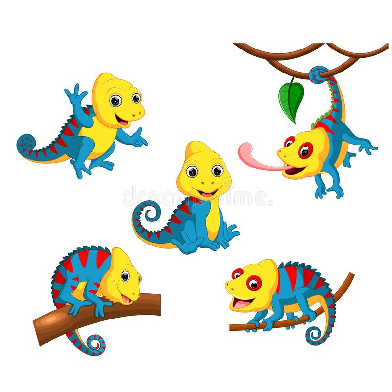 Samlingen av kameleonten med fullcolour och olikt posera vektor illustrationer