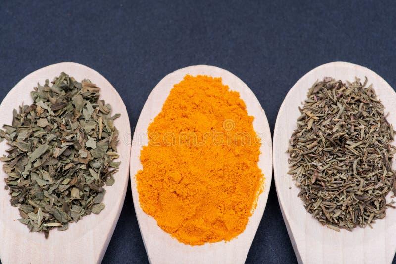 Samlingen av kryddor i träskedar torkade organisk basilika, gurkmejapulver, kulinarisk timjanört på mörker royaltyfri fotografi