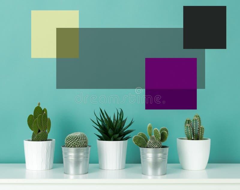 Samlingen av olika inlagda kaktushusväxter på den vita hyllan mot pastellfärgad turkos färgade väggen Kaktuns planterar affischen arkivbild