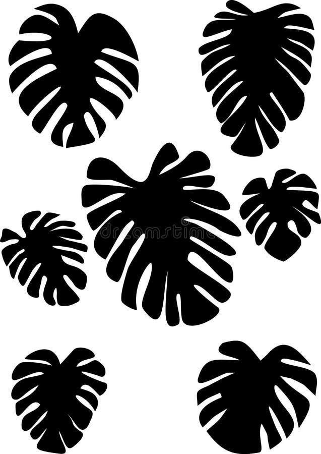 Samlingen av svart på vit lämnar monstera bakgrund isolerad white tropisk växt stock illustrationer