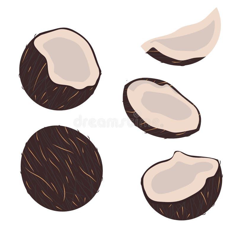 samlingen b?r fruktt tropiskt kokosnötter i plan stil som isoleras på vit bakgrund stock illustrationer