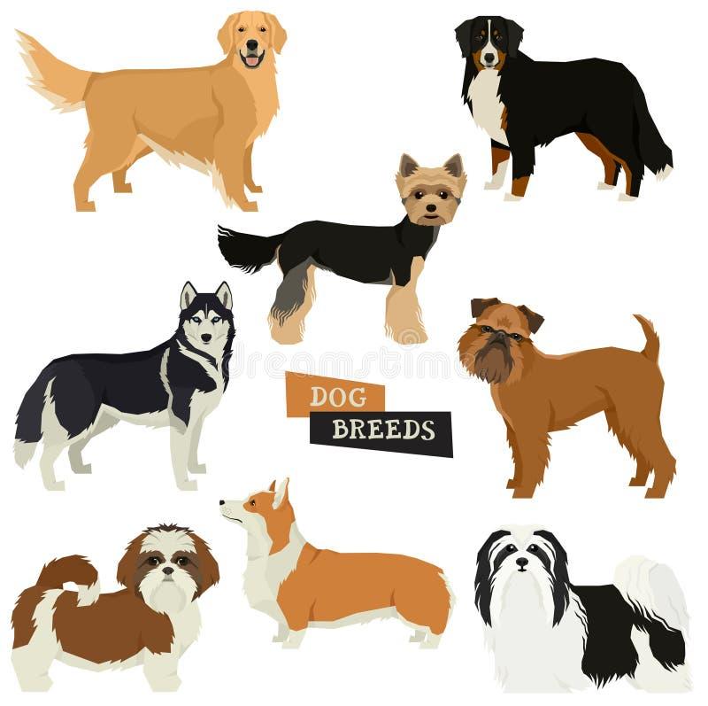 Samlingen för vektorillustrationhunden isolerade objekt stock illustrationer
