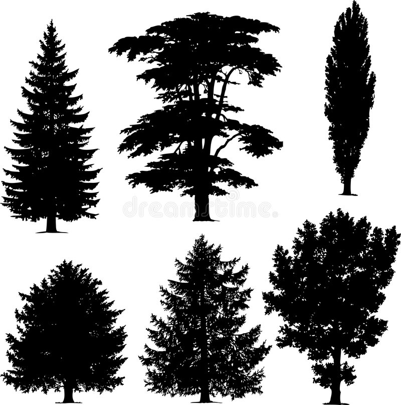 samlingen sörjer trees royaltyfri illustrationer