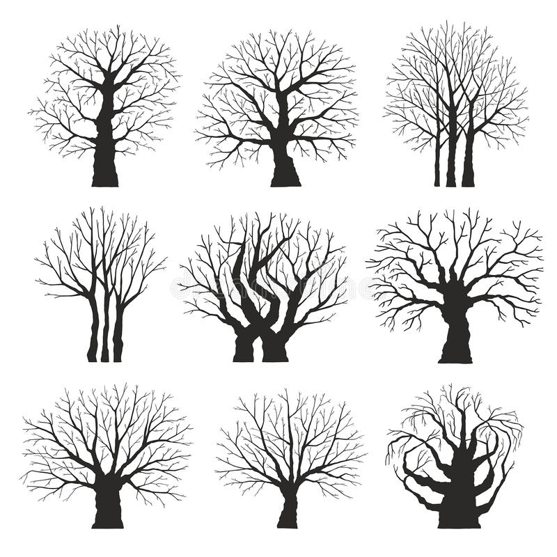 samlingen silhouettes trees vektor illustrationer