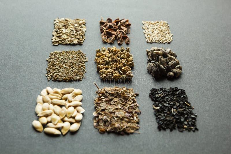 Samlingen st?llde in av s?des- korn och fr?h?gar: rabarber gr?nsallat, beta, spenat, l?k, dill, melon, morot, f?nk?l som isoleras arkivbild