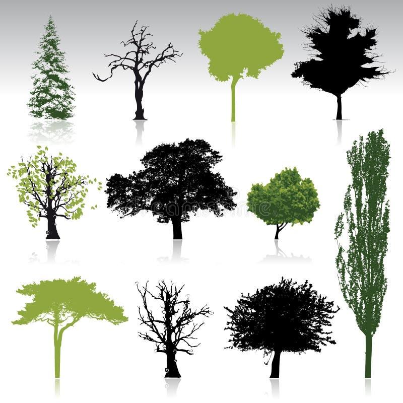samlingsdesignen silhouettes den din treen vektor illustrationer