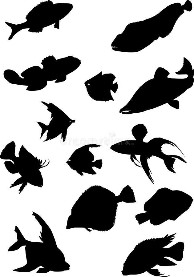 samlingsfisksilhouettes vektor illustrationer