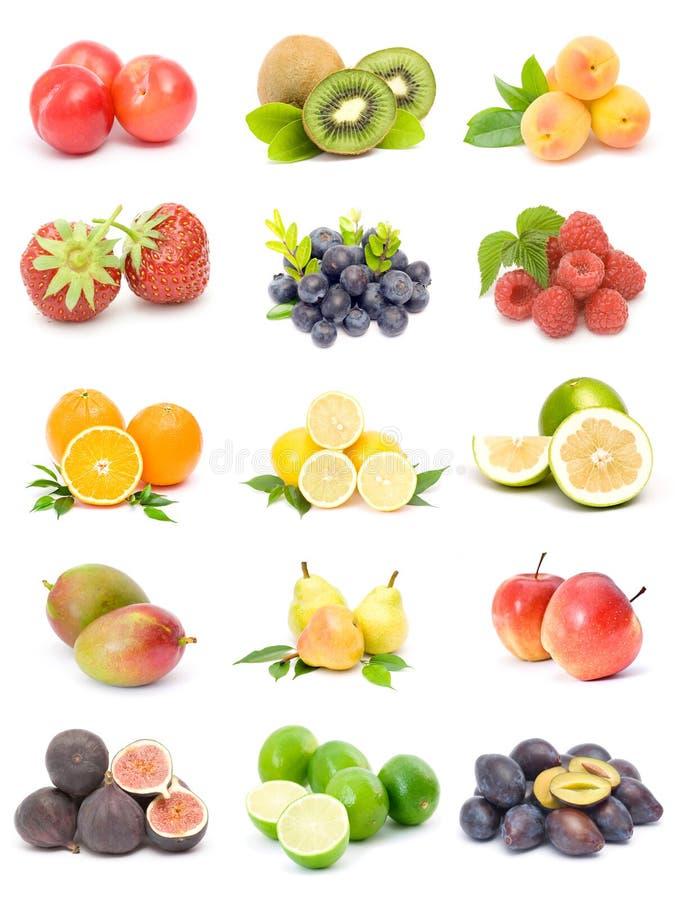 samlingsfrukt arkivfoto