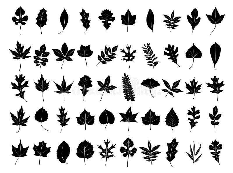 samlingsleaf royaltyfri illustrationer