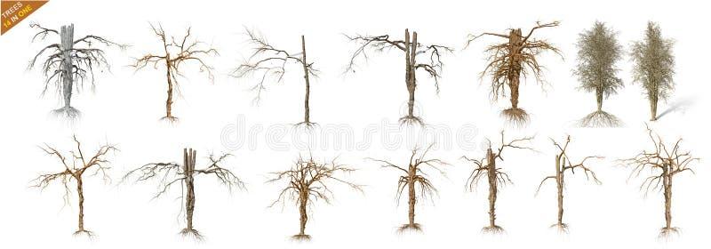 Samlingspacke för 14 död träd som isoleras över en vit bakgrund stock illustrationer