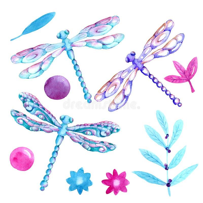 Samlingsvattenfärg av flygsländor F?r r?kningsdesign och att f?rpacka, bakgrunder stock illustrationer