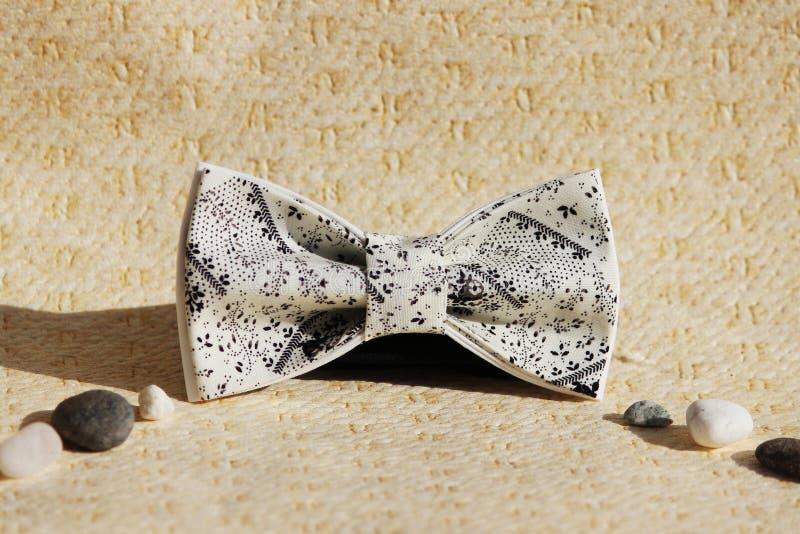 Sammansättning: Överdådig beiga med en svart liten modell av en fluga och kiselstenar på en beige bakgrund royaltyfri bild